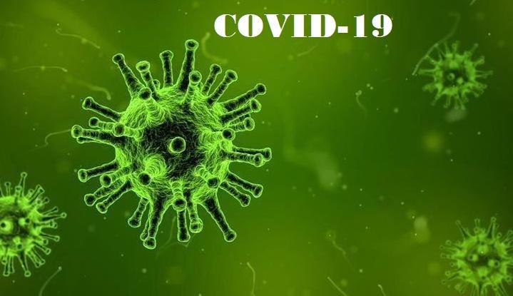 WHO Tetapkan Covid-19 Pandemi, Dirjen P2P: Semua Negara Harus Antisipasi dan Respons