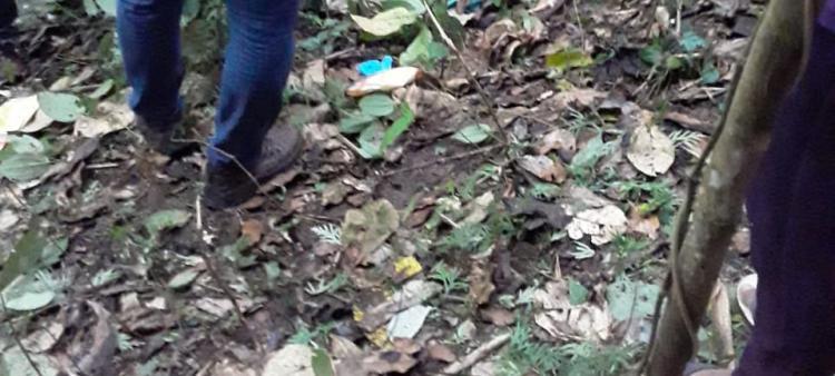 Lima Hari Menghilang, Ketua KPPS di Tarutung Ditemukan Tewas di Tengah Hutan