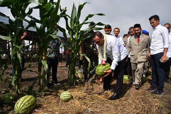 Tinjau Kebun SMKN 1 Pagaran, Gubernur Sumut: Harus Dikembangkan dan Bermanfaat Bagi Masyarakat