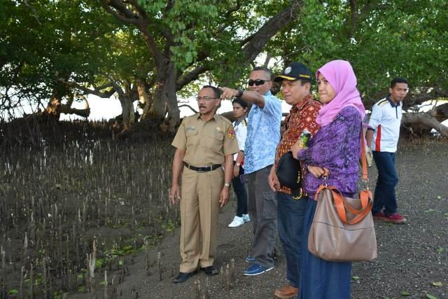 Bakamla RI Periksa Kondisi Mangrove di Atambua Pasca Tanam