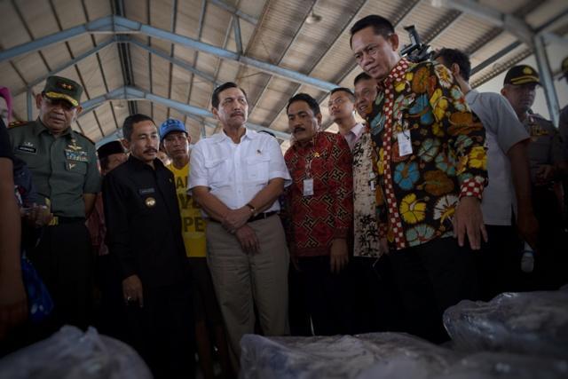 Pemerintah Tata Strategi Pengambilan Ikan yang Dapat Bangun Industri