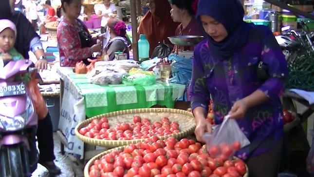 Dampak Erupsi Sinabung, Harga Sayuran Naik