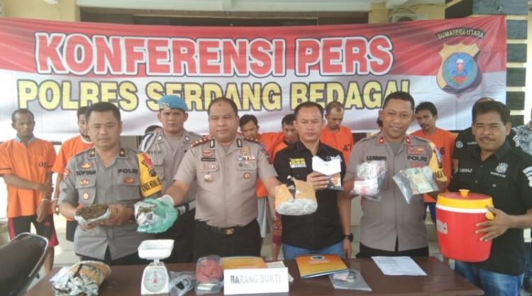 Dalam Sepekan, Polres Sergai Tangkap 9 Pelaku dan Lumpuhkan 1 Tersangka Kasus Narkoba