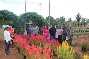 Kebun Bunga Satgas Yonif 411 Kostrad Jadi Alternatif Wisata Warga Merauke