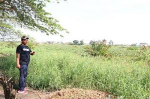 Danau Griya Martubung Bakal Jadi Objek Wisata Baru di Kota Medan
