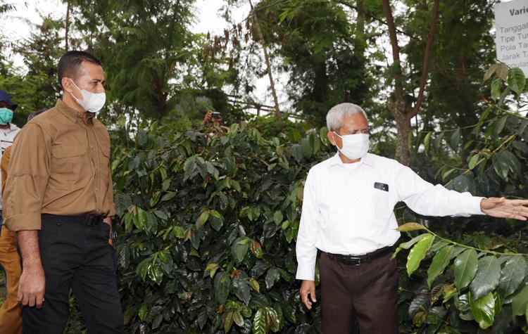 http://beritasumut.com/photo/berita/dir122020/adv-5.jpeg