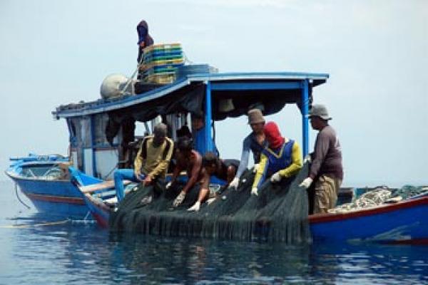 Dinas Perikanan dan Kelautan Sumut Dorong Nelayan Bentuk Koperasi