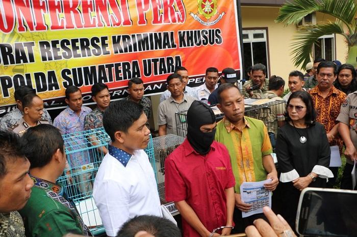 Jual Satwa Dilindungi via Facebook, Arbain Dicokok Polisi di Hamparan Perak