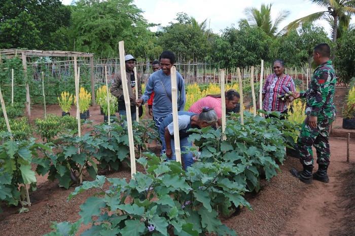Satgas Yonif/411 Kostrad Berikan Penyuluhan Pertanian ke Kelompok Wanita Tani Distrik Sota