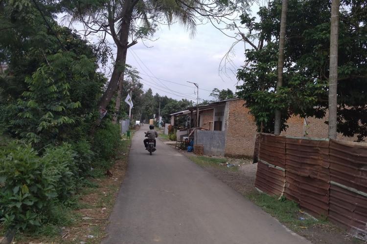Nyamuk Aedes Aegypti Serang warga di Marindal, Dua orang Anak Meninggal