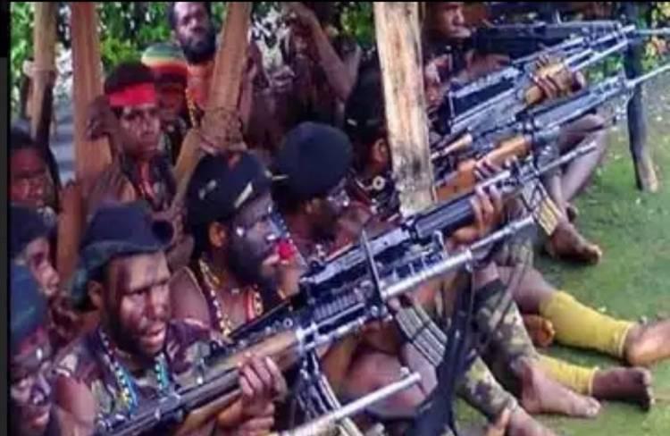 Prada Ginanjar Arianda, Prajurit TNI Gugur Ditembak KKSB Papua