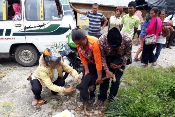 Dinas Pertanian dan Ketahanan Pangan Pemkab Pakpak Bharat Lakukan Vaksinasi Rabies