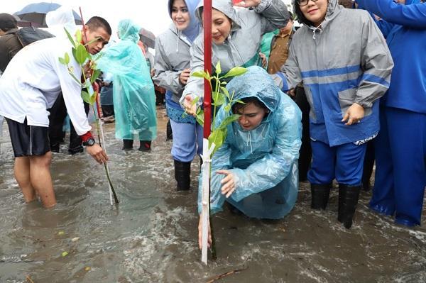 Peduli Terhadap Lingkungan Hidup, Ibu Negara Bersama Ketum Dharma Pertiwi Tanam Mangrove di Pantai Labuan