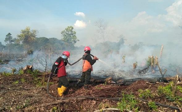Masuk Musim Kemarau, BNPB Imbau Warga Waspada Karhutla