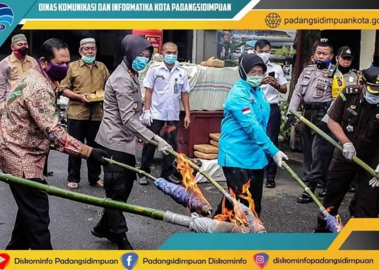 Polres Padangsidimpuan Musnahkan 250 Kilogram Ganja