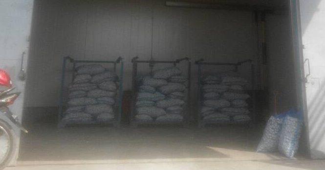 Penyimpanan Bawang dan Cabai Ilegal di Tanjung Mulia Dijual Bebas ke Pembeli