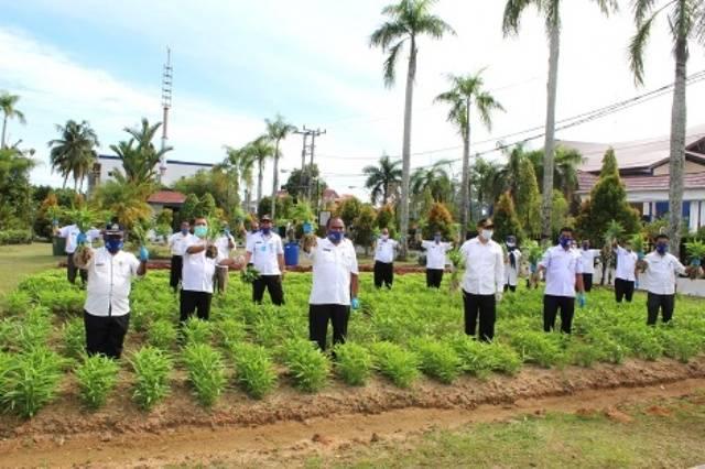 Bupati Tapteng Laksanakan Panen Perdana Sayuran dalam Rangka Menunjang Ketahanan Pangan Daerah