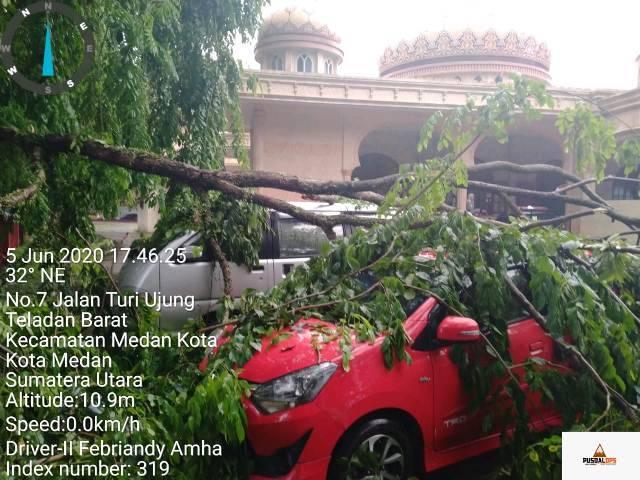 Dua Unit Mobil Tertimpa Pohon di Jalan Turi Medan Kota