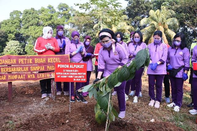 Ketum IKKT PWA Ny Nanny Hadi Tjahjanto Tanam Pohon dan Semai Bibit Ikan untuk Ketahanan Pangan