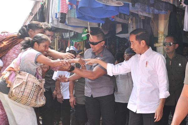 Presiden Jokowi Minta Kebakaran Hutan di Riau Segera Diselesaikan