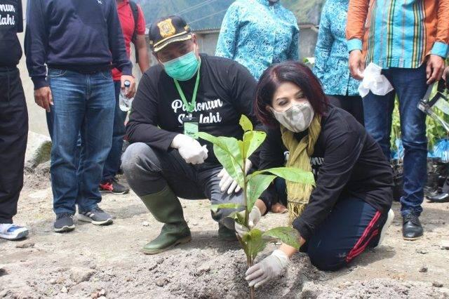 Bupati dan Ketua Dekranasda Dairi Tanam 1000 Pohon Bersama Masyarakat
