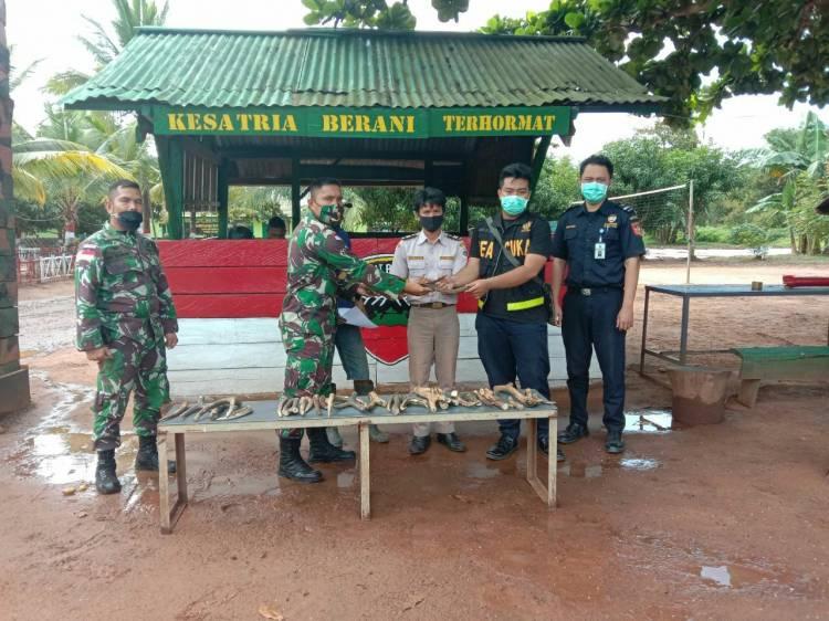 Kerjasama TNI-Polri dan CIQS PLBN Berhasil Gagalkan Penyelundupan Tanduk Rusa