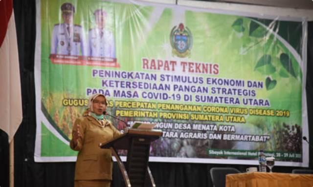 Sekdaprov Sumut Fokus Perkuat Ketahanan Pangan di seluruh Kabupaten/Kota Hadapi Covid-19