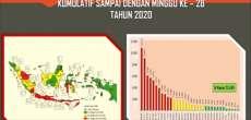 Hingga Juli, Puluhan Ribu Orang di Indonesia Kena DBD