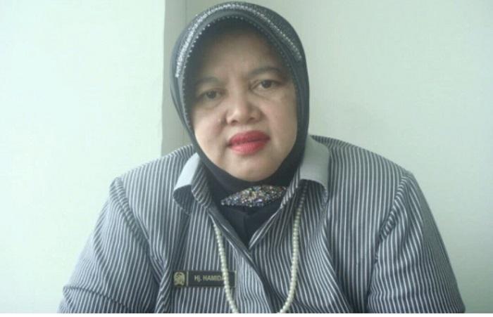 Hamidah Diumumkan Menjadi Ketua Fraksi PPP di DPRD Medan