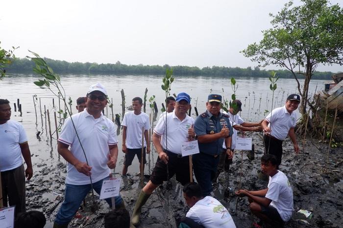 Pelindo 1 dan Kemenko Maritim Tanam Mangrove di Kampung Nelayan Indah