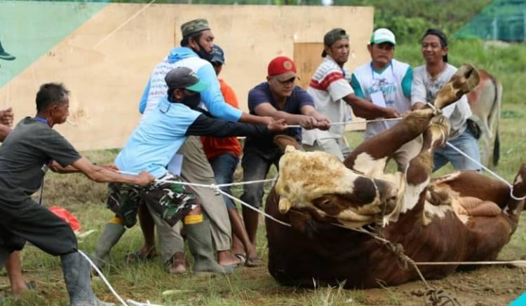 Total 435 Hewan Kurban Diserahkan Polda Sumut untuk Masyarakat