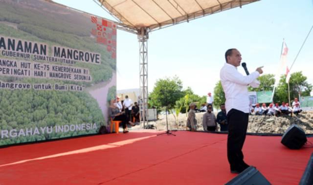 Gubernur Edy Rahmayadi Tanam Mangrove di Langkat, Cegah Abrasi Pantai di Sumut