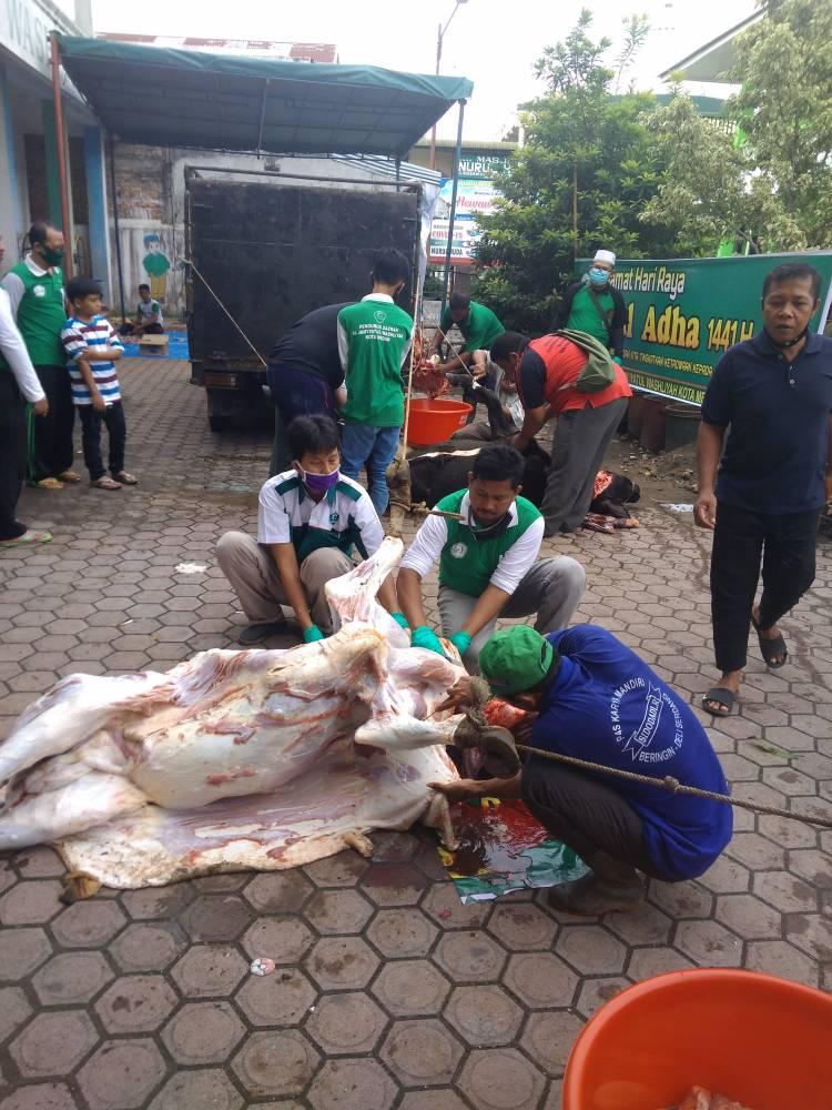 Pengurus PD Al - Washliyah Kota Medan Kurban 4 Ekor Sapi
