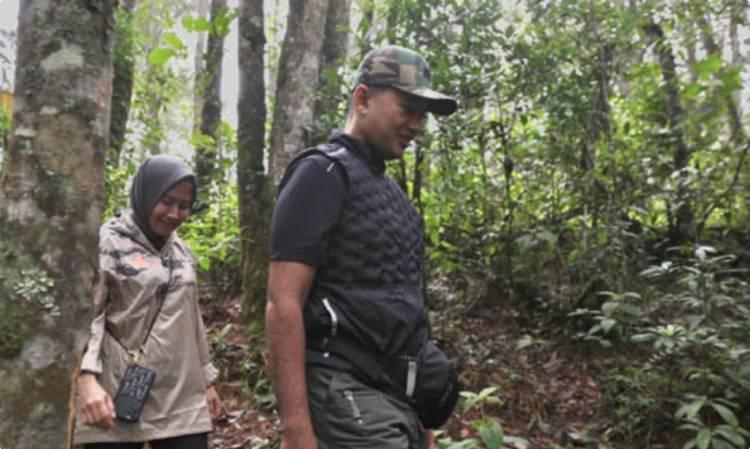 Musa Rajekshah Jungle Trekking ke Aek Nauli, Ajak Wisatawan Nikmati Wisata Ilmiah Danau Toba