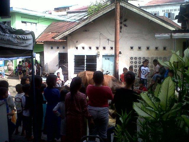 Warga Kampung Aur Saksikan Penyembelihan Hewan Kurban