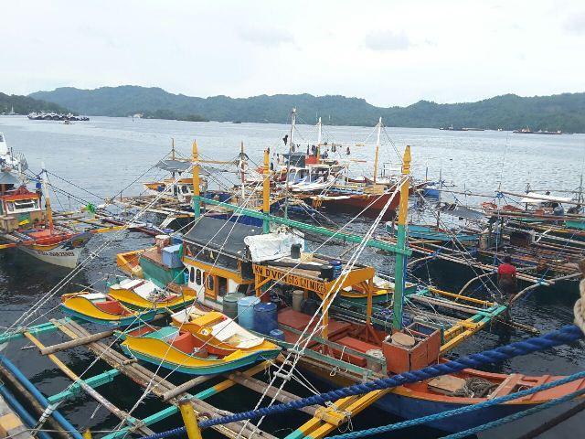 Pemerintah Berhasil Tangkap 8 Kapal Ikan Ilegal