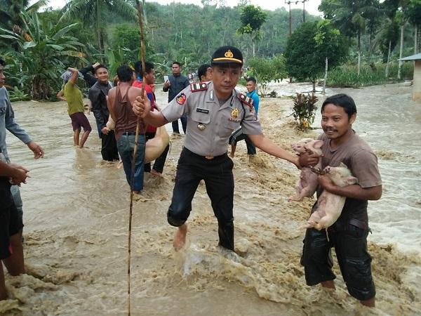 Kapolsek Bawolato Nias Bantu Evakuasi Warga yang Alami Musibah Banjir