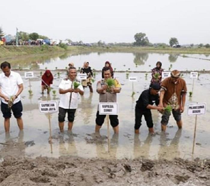 Kapolda Sumut Ajak Masyarakat Jaga Kawasan Hutan dan Bibir Pantai di Sergai