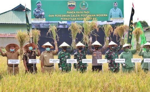 Plt Walikota Medan Apresiasi Panen Raya Padi dan Peresmian Galeri Pertanian Modern Perkotaan Kodim 0201/BS
