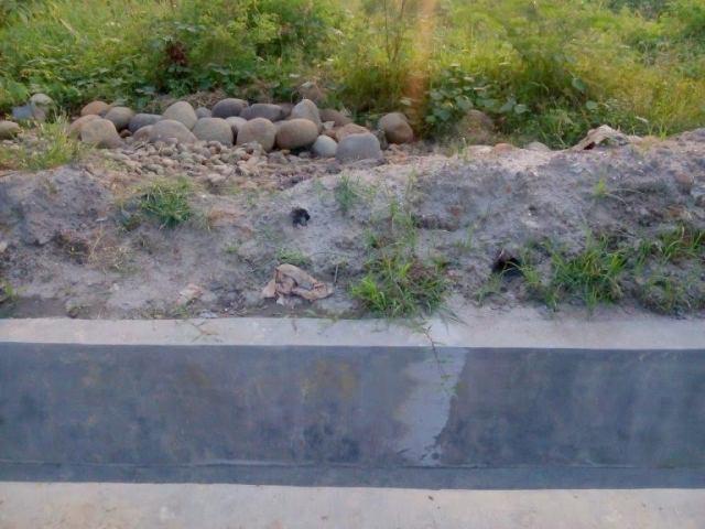 Gawat, Proyek Drainase di Merbau III Pakai Batu Koral Curian