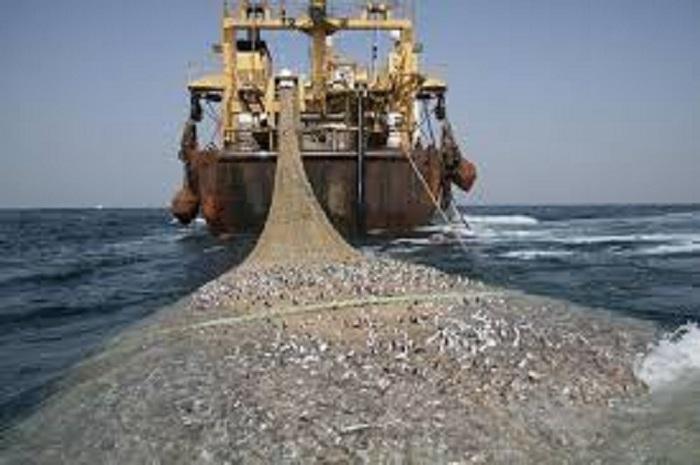 Kapoldasu Bakal Koordinasikan ke Pemda Soal Alat Tangkap Nelayan dan SPBN