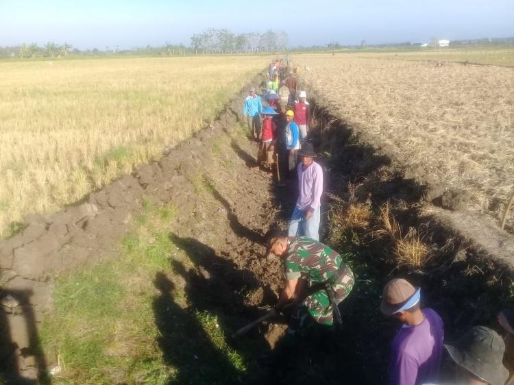 Keberadaan Babinsa di Lamongan Mampu Atasi Kesulitan Petani