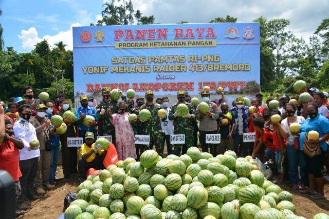 Perkuat Ketahanan Pangan, Prajurit TNI Panen Raya Bersama Masyarakat Papua di Jayapura
