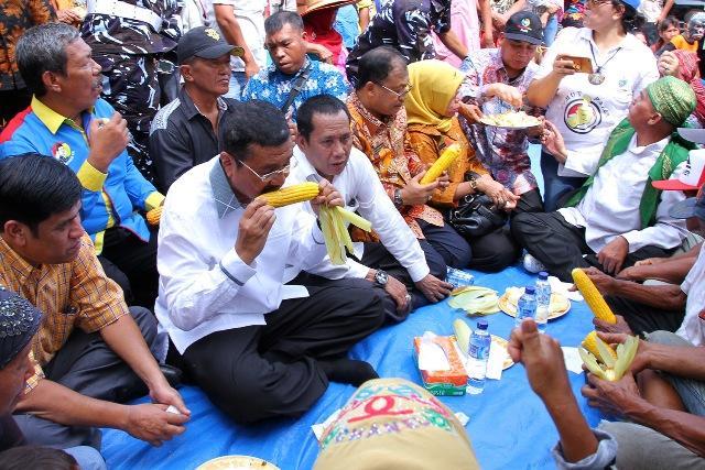 Gubernur Panen dan Makan Jagung Bersama Petani di Binjai