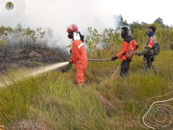 Titik Panas Menurun Drastis, Menteri LHK: Kolaborasi Bersama Berhasil Cegah Kebakaran Hutan dan Lahan