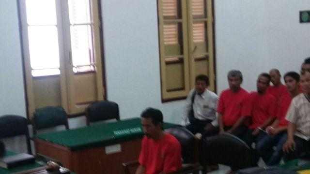 Jaksa Tuntut Penjual Kulit dan Organ Tubuh Harimau Sumatera Tiga Tahun Penjara