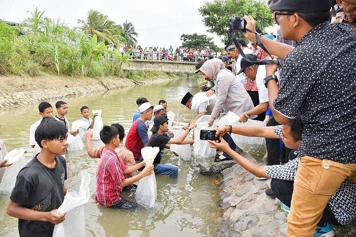 Sebanyak 20 Ribu Bibit Ikan Nila Ditebarkan Gubsu di Panyabungan Madina