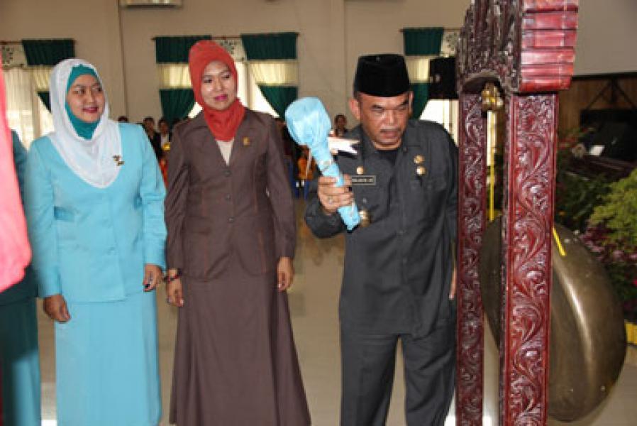 Ny Nurhaida Farid Wajedi Ketua Himpaudi Medan 2013-2017