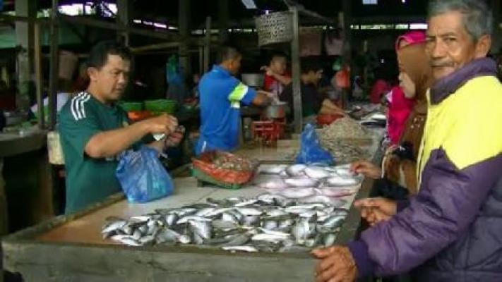 Perairan Sumatera Dilanda Cuaca Buruk, Harga Ikan di Pasar Ikan Langkat Melonjak