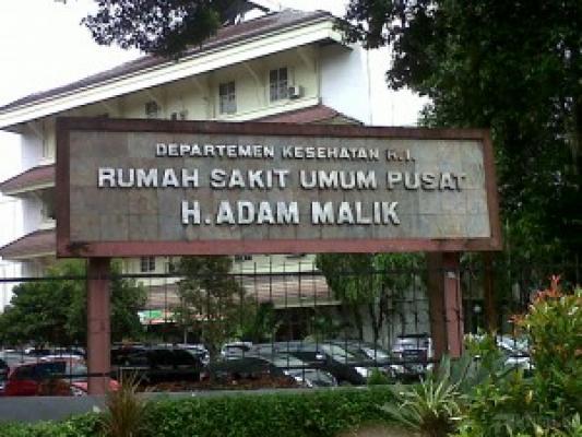 RSUP Adam Malik Kekurangan Tenaga Perawat